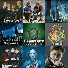 Hrry Potter, Harry Potter Items, Mundo Harry Potter, Harry Potter Ron, Harry Potter Tumblr, Harry E Gina, Harry Potter Jk Rowling, Desenhos Harry Potter, Saga