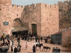 Gates of Jerusalem. You'll get a really good sense of the history and locations of the Gates in the Old City of Jerusalem in this educational pictorial video