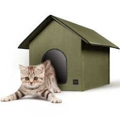 Mindkoo Pet House ** Want to know more, click on the image. (This is an affiliate link and I receive a commission for the sales)