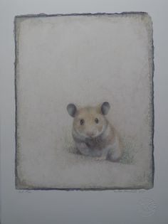 Victor Koulbak Silverpoint, Reproduction, Art Drawings, Contemporary Art, Creatures, Graphite, Dimensions, Animals, Zodiac