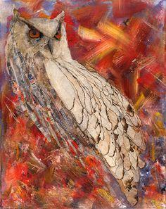 owl by Aubrey Carroll
