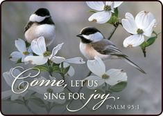 Come let us sing for joy quotes music birds faith bible sing christian scriptures