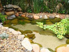 lagos ornamentais - Pesquisa Google. I like sand bottom an nice plantings.