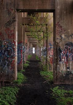 Abandoned Coal Pier 3 by phillytrax on Flickr.