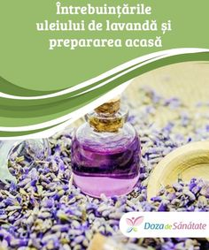 Personal Care, Bottle, Handmade, Beauty, Lavender, Fragrance, Hand Made, Personal Hygiene, Flask