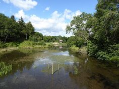 A Retirement Blog- Dodging the Rain by visiting local conservation areas
