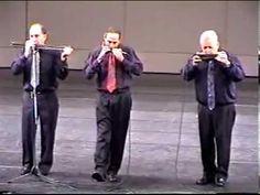 Adler Trio - Tico Tico .