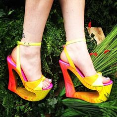 a splash of brights... wud luv to try,...