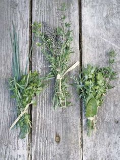 <p>To keep herbs tasting fresh for up to a month, store whole bunches, washed and sealed in plastic ... - Janis Nicolay