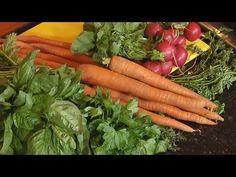 Denisse nos enseña que frutas y vegetales deben ir en el refrigerador y en que parte. Carrots, Vegetables, Recipes, Diy, Freezer, Food, Youtube, Ideas, Gastronomia