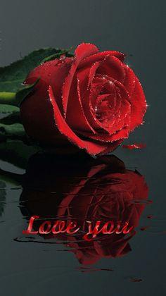 Décent souvenir de l'image: Amour 5