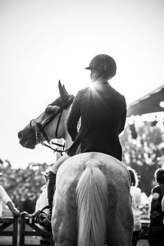 Kent Farrington and Willow waiting patiently at the in gate ~ Aachen 2014 ~ ph. Noelle Floyd