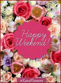 Happy Week-end ! Bon Weekend, Good Morning Happy Weekend, Happy Weekend Images, Happy Weekend Quotes, Hello Weekend, Its Friday Quotes, Good Morning Wishes, Happy Quotes, Tuesday Quotes