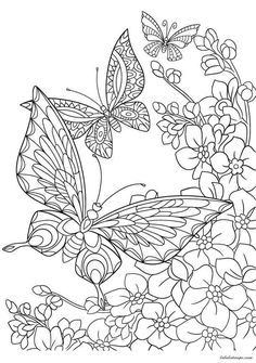 Zentangle stylized cartoon butterfly and sakura flower isolated on white background. Sketch for adult antistress coloring page. Hand drawn floral, doodle, zentangle design elements for coloring book. Space Coloring Pages, Spring Coloring Pages, Free Adult Coloring Pages, Printable Coloring Pages, Coloring Sheets, Coloring Books, Colouring, Fall Coloring, Butterfly Coloring Page
