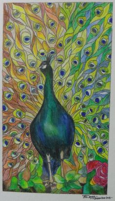 Colour pencil drawing - Derwent Inktense Pencils on watercolour paper