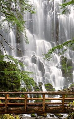 Ramona Falls #waterways #valleys #waterfalls