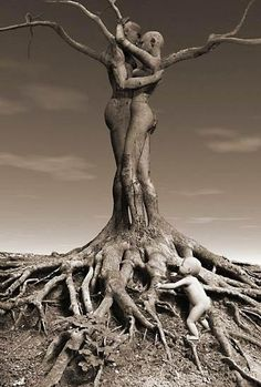.Tree's that rub together stay together and make bush'es.