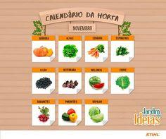 Novembro chegou! Isso significa que tá na hora de fazer o plantio de mais alguns legumes, frutas e verduras deliciosos!