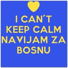 Bosnia national sports teams