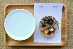 A Couple of Easy Montessori Activities - Sink/Float and Magnetic/Non-Magnetic