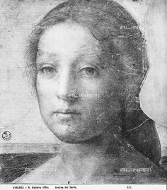 Woman's face, drawing by Andrea del Sarto, Room of Drawings and Prints, Uffizi Gallery, Florence.