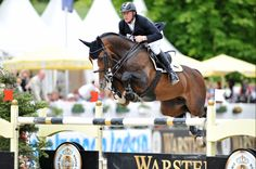 """riverhooves: """" Plot Blue is gorgeous. Him and Marcus Ehning are one of my favorite riding pairs (there's a click-through link in case you're wondering about sources. Horse Photos, Horse Pictures, Cute Ponies, Hunter Jumper, Show Jumping, Horse Girl, Horse Photography, Show Horses, Horseback Riding"""