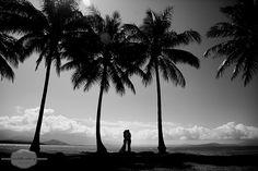 Port Douglas Palms - one little wedding photography Cairns