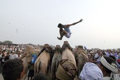 The Ancient Sport of Camel Jumping in the Deserts of Yemen