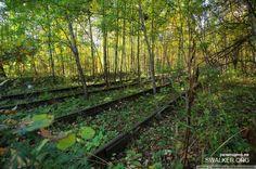 """Дальше потопал по жд путям, ведь они должны же вывести куда-нибудь, в лесу постоянно попадались """"трупики"""" машин."""