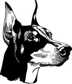 Customize on line. Black Doberman, Doberman Dogs, Dobermans, Dobermann Tattoo, Animal Drawings, Art Drawings, Tatuagem Old School, Dog Car, Blackwork