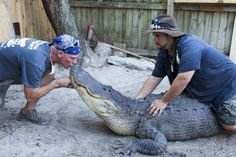 -If you're going to come face to face with an alligator, Paul Bedard and Jimmy Riffle are the kind of guys you want by your side.