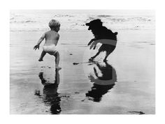 Boy and Dog Playing on Beach #art #decor #wall #dogs
