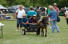 Doughty Run School Auction, Holmes County, OH  July 2012