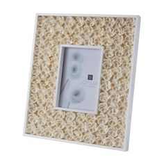 Natural Shell Bud 5x7 Frame by Dimond Home