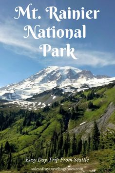 Mt. Rainier is an easy day trip from Seattle!