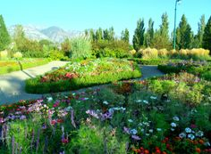 Nielsen's Grove is thought to be the first official park in Utah, and and see it in Orem, UT!