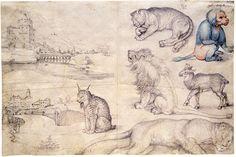 Gli appunti degli artisti - DidatticarteBlog - Albrecht Dürer (1471-1528)