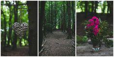 The woodland at Kilyon