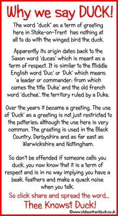 Why we say Duck in the Potteries! Stoke On Trent, Weird Facts, Fun Facts, Old Pottery, Quirky Quotes, Stoke City, English Fun, All Or Nothing