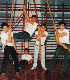 The Dave Clark Five at the gym The Dave Clark Five, Mike Smith, British Invasion, Basketball Court, Sports, Gym, Pictures, Hs Sports, Sport