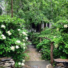 Rustic handrail, stone path & hydrangea leading to cottage door