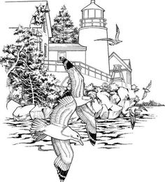 Detailed Coloring Pages For Adults Picture
