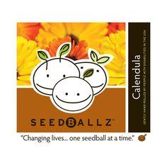 Seedballz Calendula (1x 4 Oz)