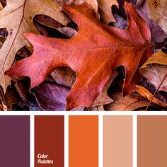 Color palette { autumn leaves } #2795