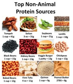 Good Vegetarian Protein Sources