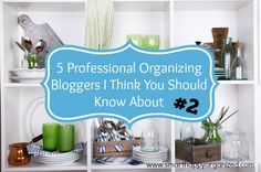 5 Professional Organizing Bloggers I Think You Should Know About: Week 2