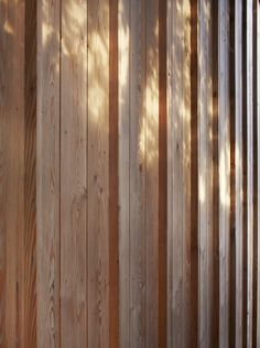 Neil Dusheiko Architects: Timber Fin House, London.