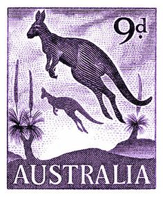Vintage and beautifully engraved postage stamp issued in 1959 by Australia in a series commemorating native fauna, here depicted is the iconic kangaroo which is a marsupial from the family Macropodidae (macropods, meaning 'large foot'). Rare Stamps, Vintage Stamps, Japanese Graphic Design, Vintage Graphic Design, Australia Kangaroo, Ayers Rock, Postage Stamp Art, Reptiles, Sydney