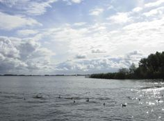 Zomerlucht Friesland (Sneekermeer)