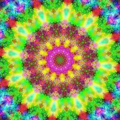 Kaleidoscope5bigmoves-21